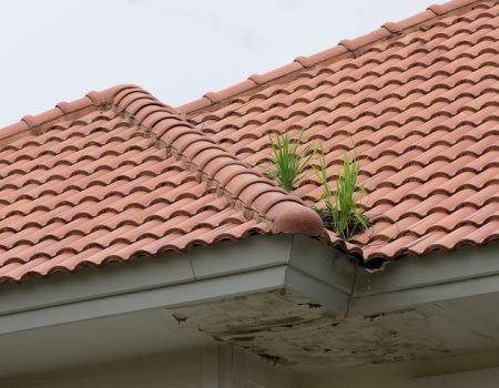 Roof problem.